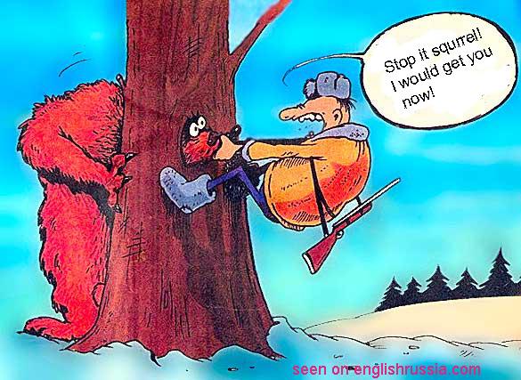 squirell, russian comics