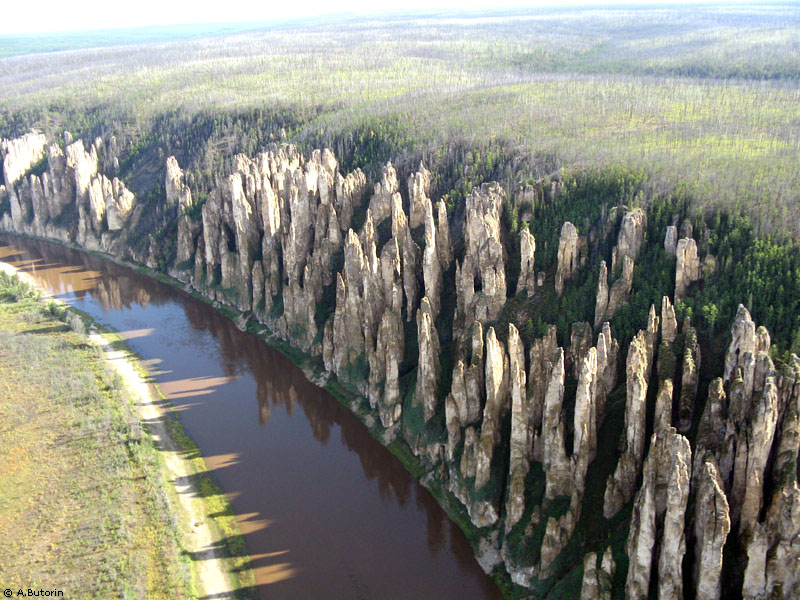 Russian forest of stone