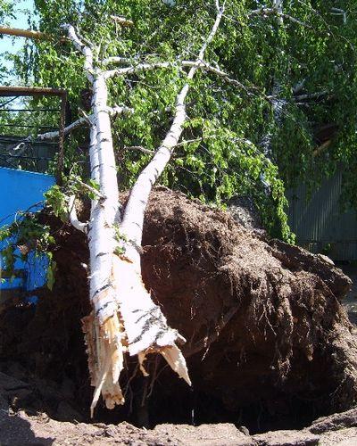 storm in Birsk 20