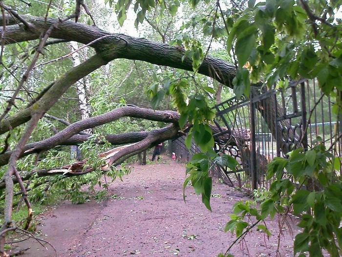 storm in Birsk 8