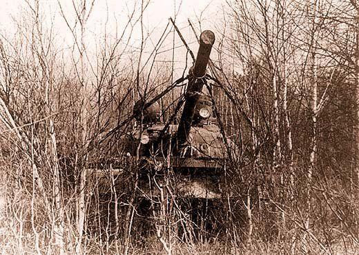 Tank Umbrella 8