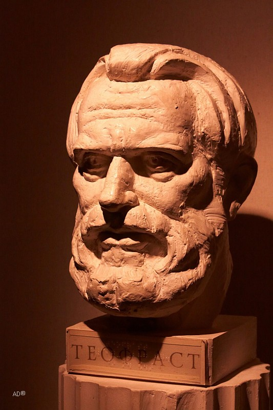 The Darwin Museum 10