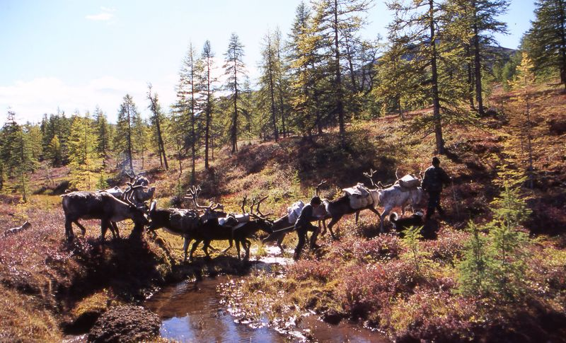 The Evenkis of the Verkhoyansk Mountains 27
