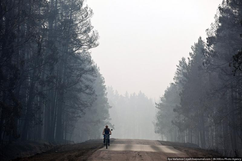 The Moscow Region On Fire 15