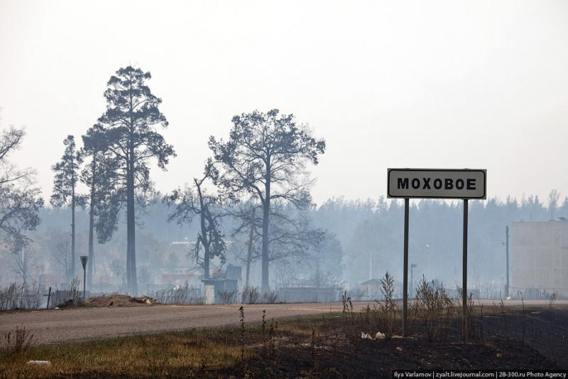 The Moscow Region On Fire 31