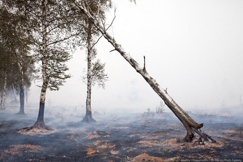 The Moscow Region On Fire 2 45