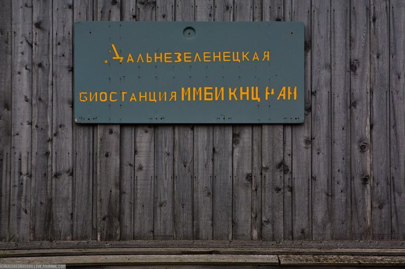 The Murmansk Marine Biological Institute 32