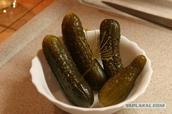 russian cuisine: russian starters 2