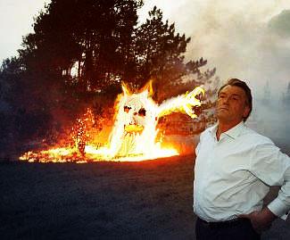 ukrainian president fights fire 14