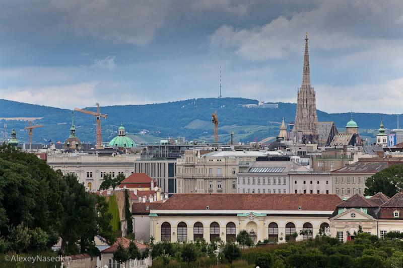 Vienna 4