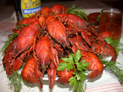 russian way of cooking crayfishes 1