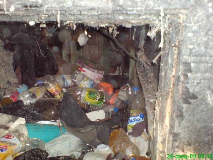Most dirty appartment in the world, in Russia, Moscow 3