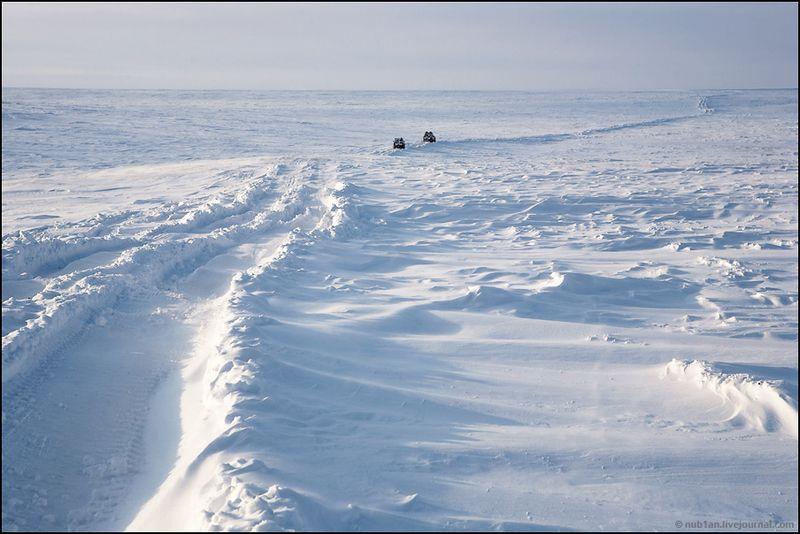 Yamal Peninsula 10