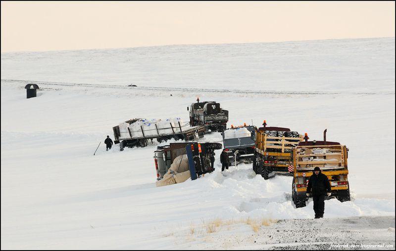 Yamal Peninsula 11