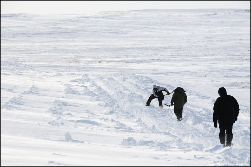 Yamal Peninsula 17