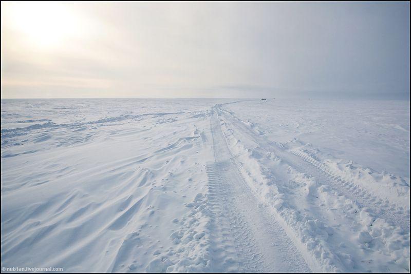 Yamal Peninsula 21