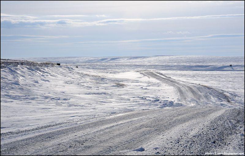 Yamal Peninsula 5