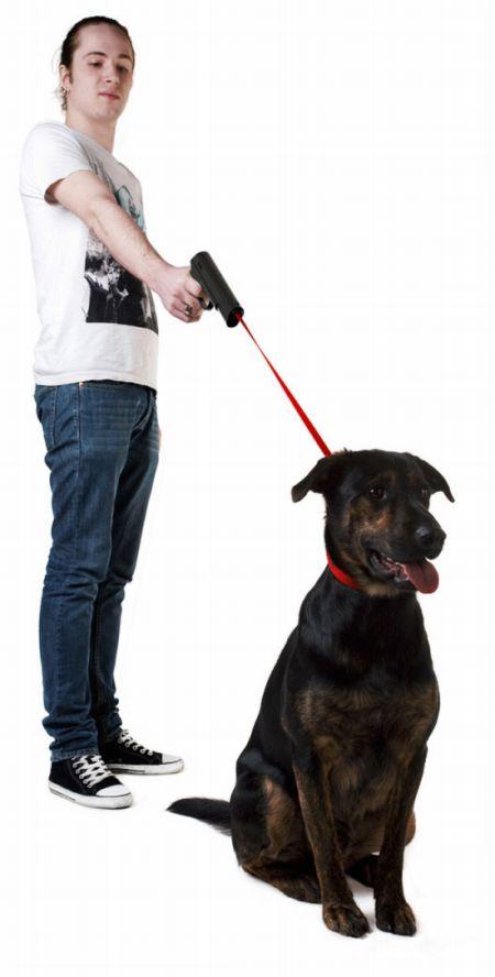 Unusual Dog's Leash