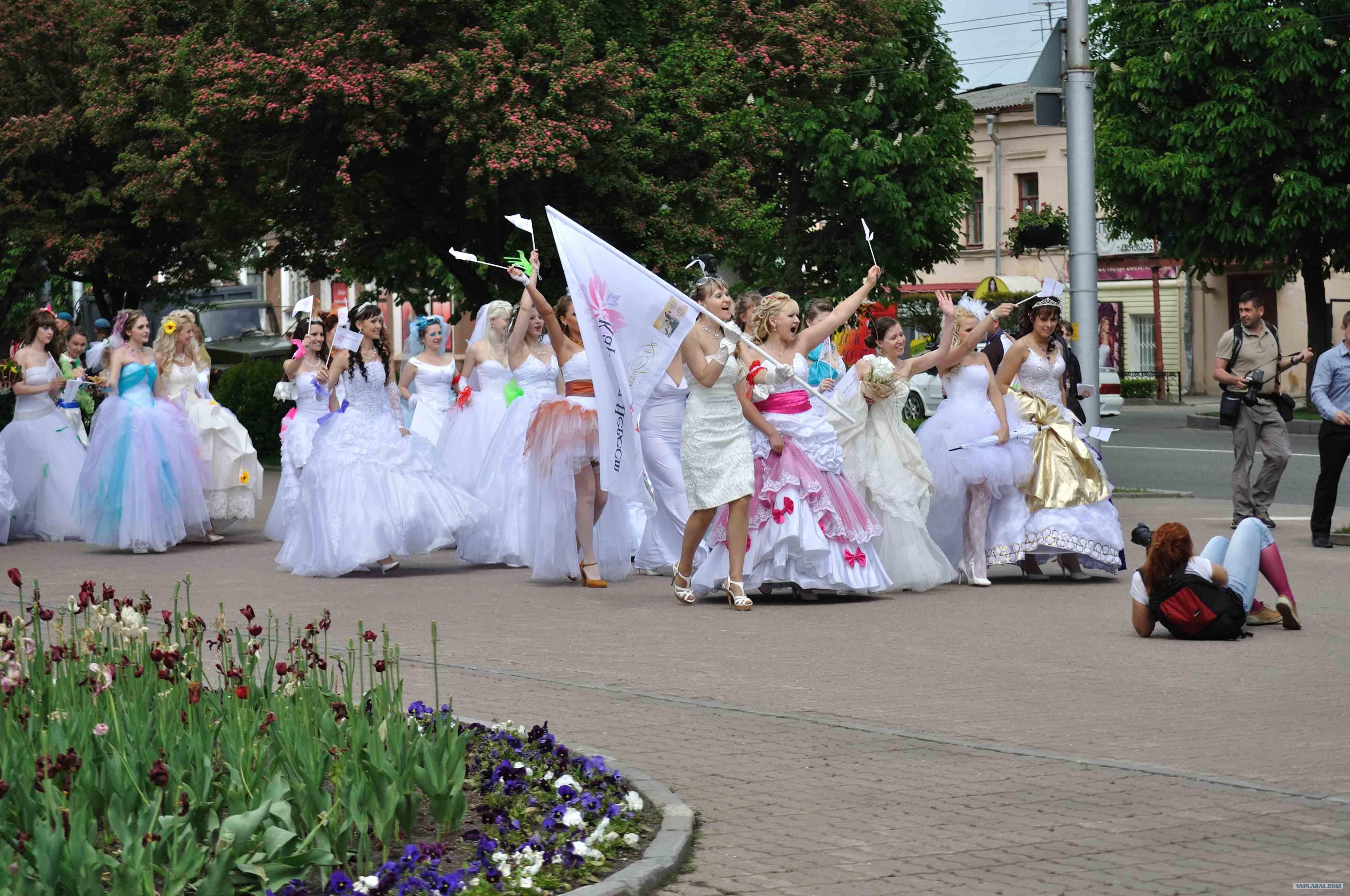 Brides Carnival in Stavropol