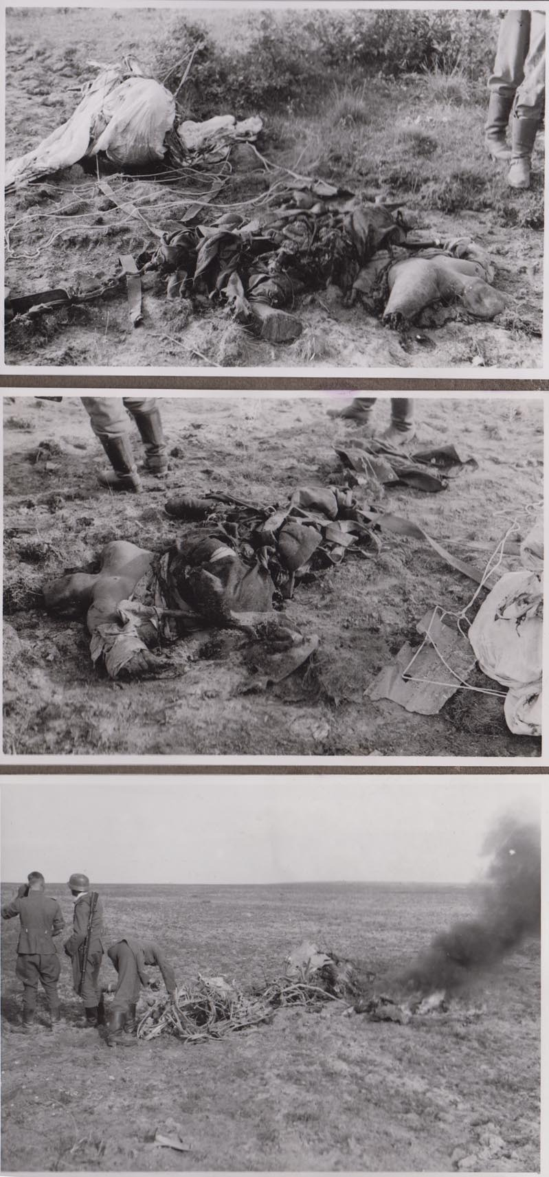 The Bloody Summer Of 1941