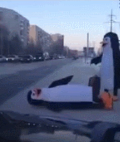 Family Of Penguins In Russia