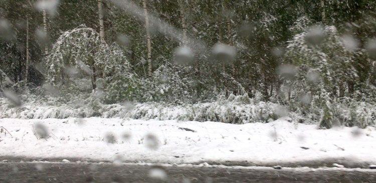 снегопад-в-Челябинской-области