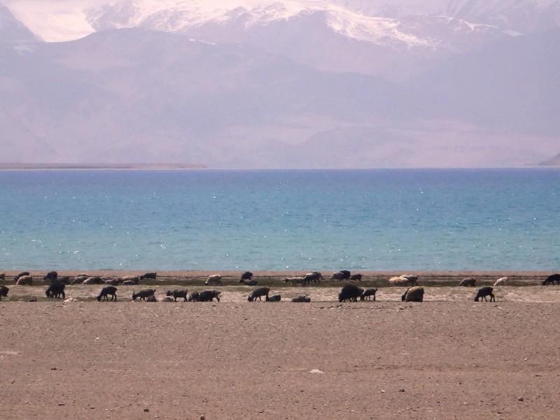 Pamir, Karakul lake
