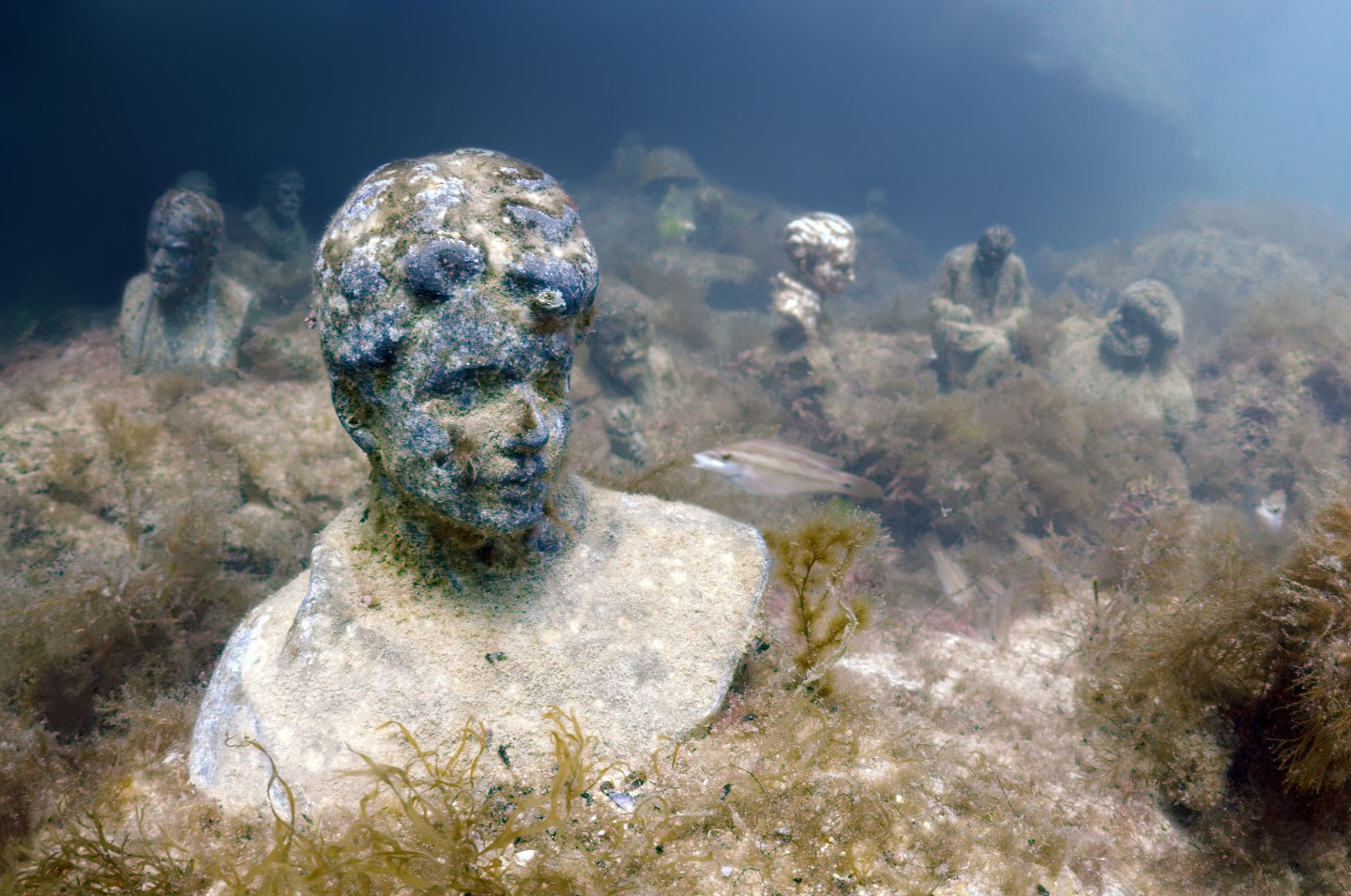 Underwater Leaders. What Is Lenin, Stalin and Dzerzhinsky Doing at the Bottom of the Black Sea?