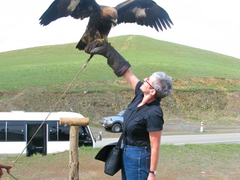 mongolia-eagle