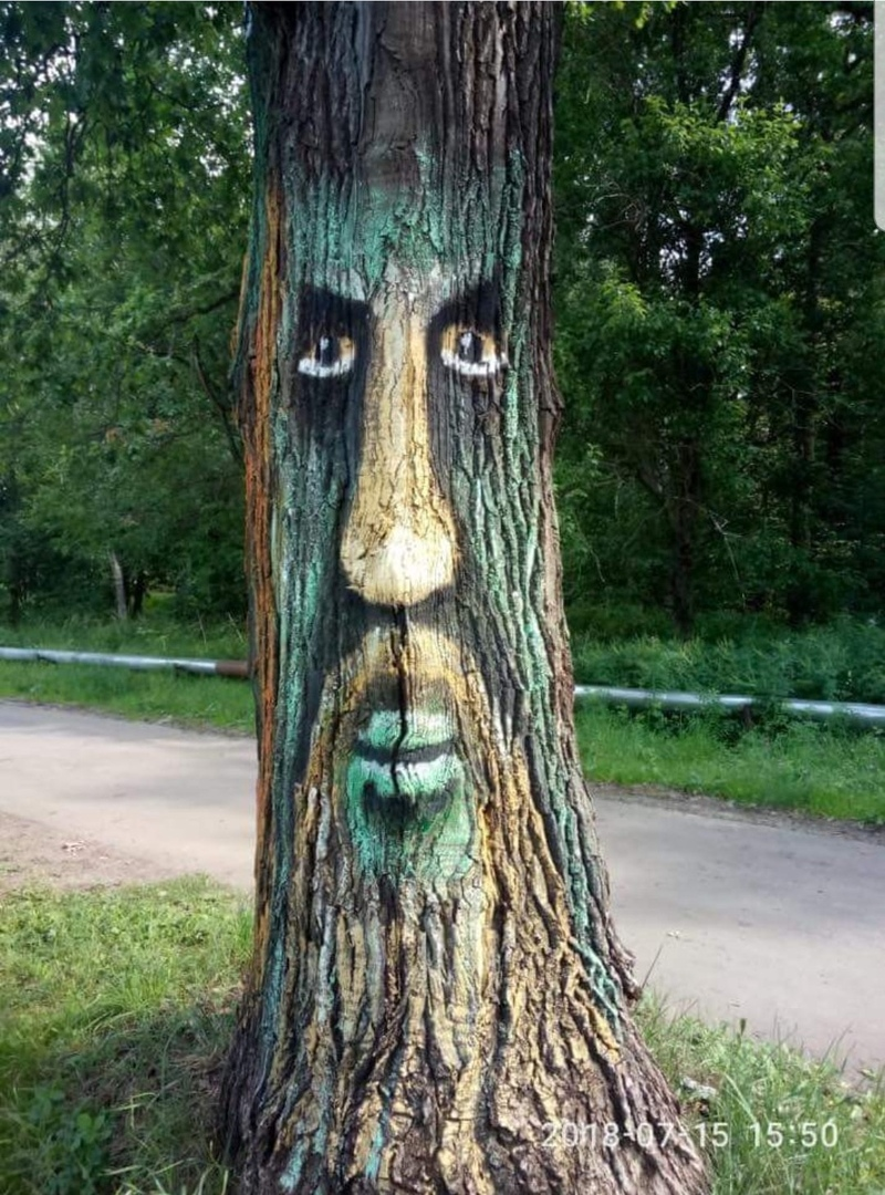 People Paint Trees with Faces to Prevent them Sawed Down
