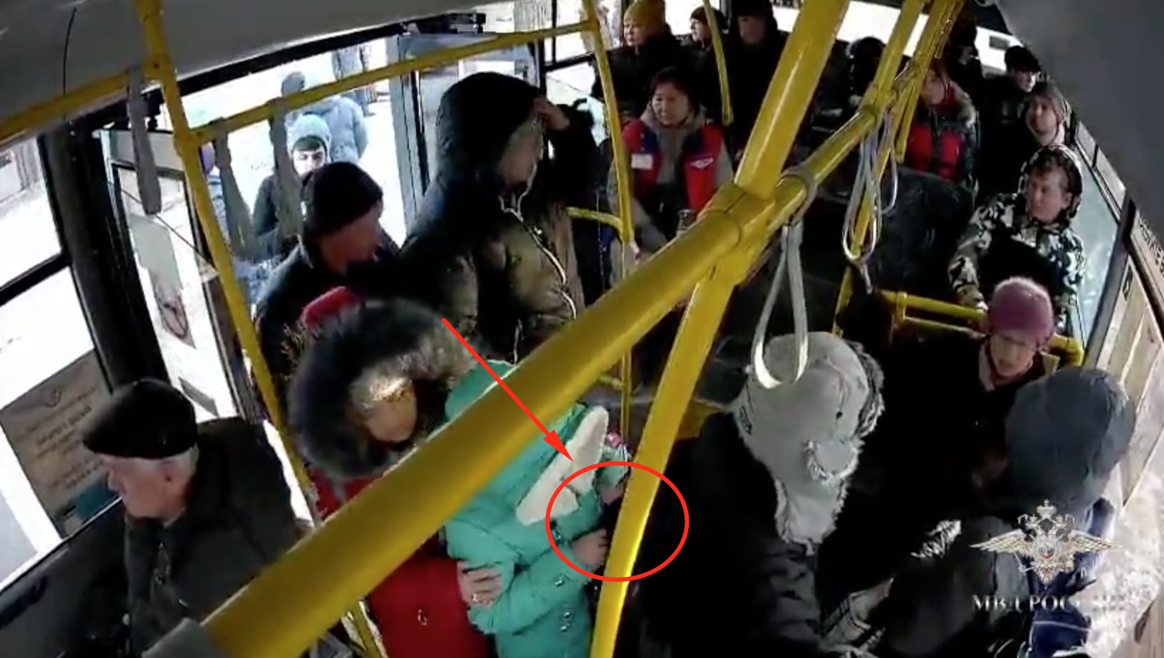 Japanese Tourist Robbed in Russian Bus [video]