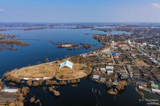 Красоты белорусского Полесья с высоты птичьего полета (13 фото)