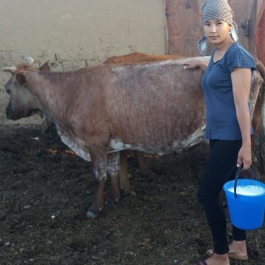 Russian Milkmaids