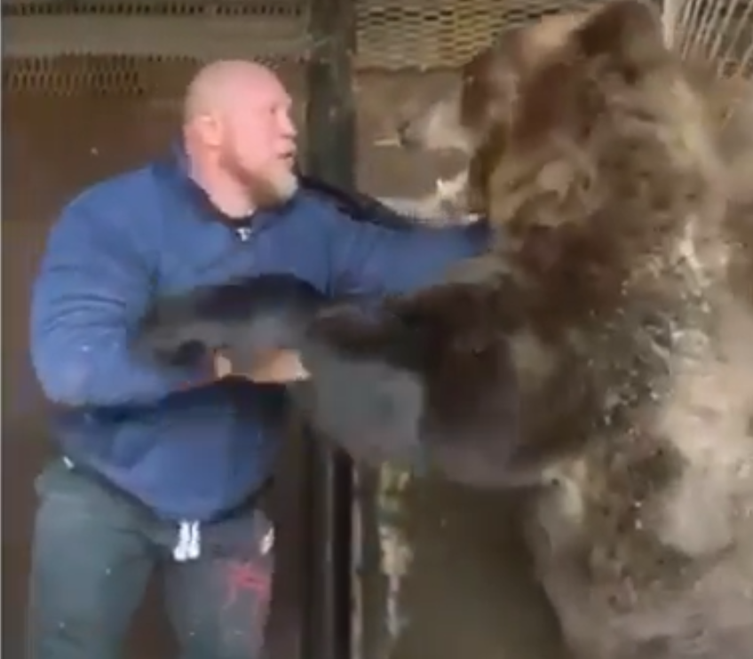 Man Vs Bear: Who's Gonna Win?