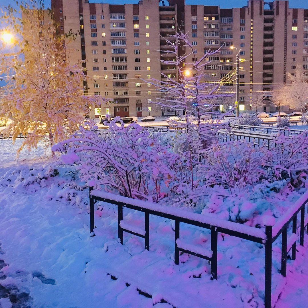 Петербуржцы делятся фотографиями первого снега