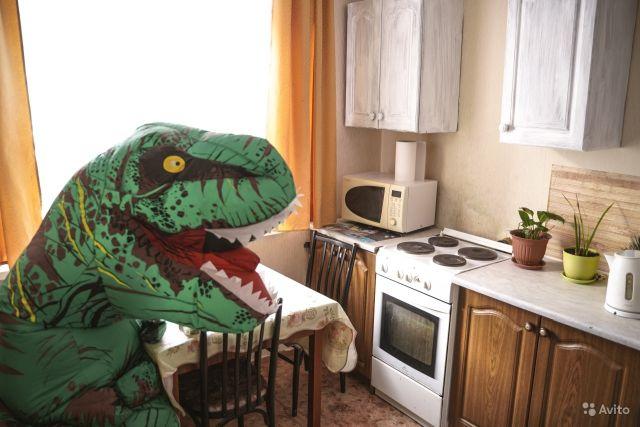 Оригинальное объявление о сдаче квартиры в Тюмени (10 фото)