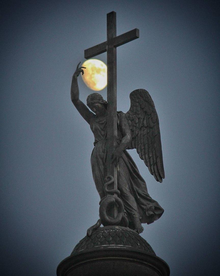 Ангелы следят за Петербургом