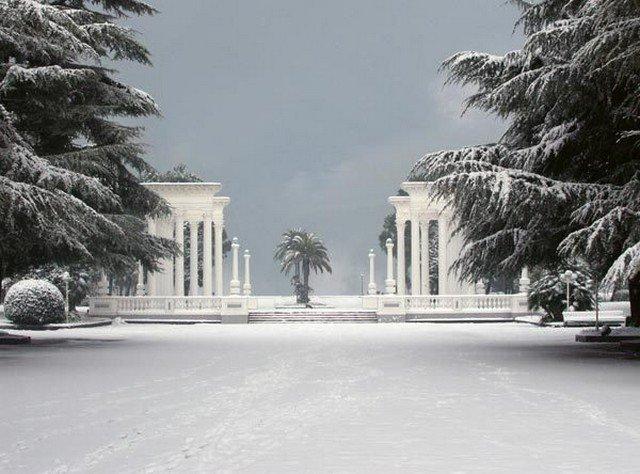 Пальмы и снег. Как зимуют в Абхазии