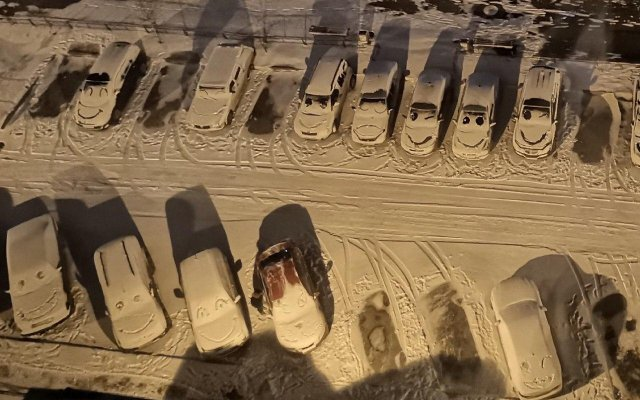 Художник решил «поиздеваться» над машинами в Шушарах