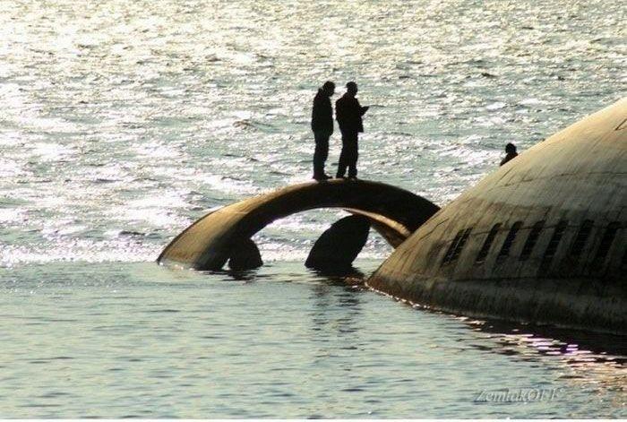 """Shark"" Submarine: When Size Matters!"
