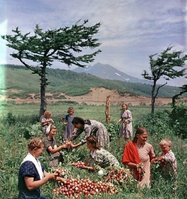 Фотографии из советского прошлого, навевающие теплые воспоминания