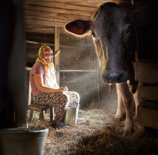 Ностальгическая подборка фотографий о беззаботном детстве в деревне