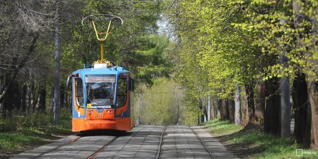 Трамвай — невероятно атмосферный, но, к сожалению, вымирающий в нашей стране вид транспорта