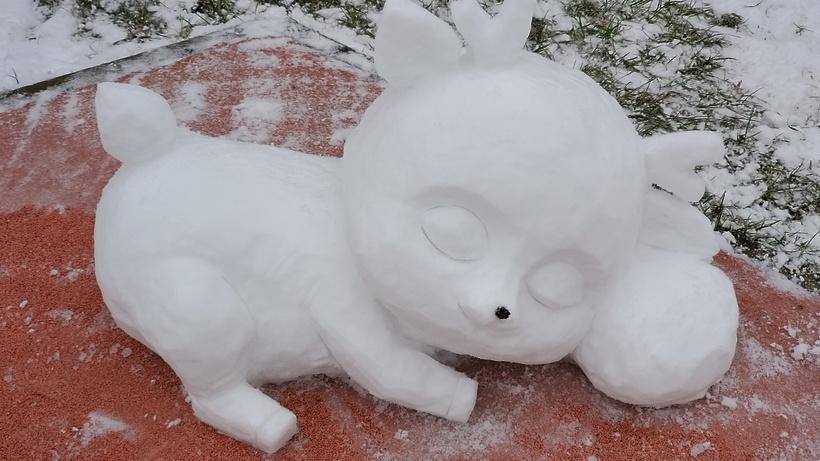 Snow Cuteness or Unusual Winter Hobby