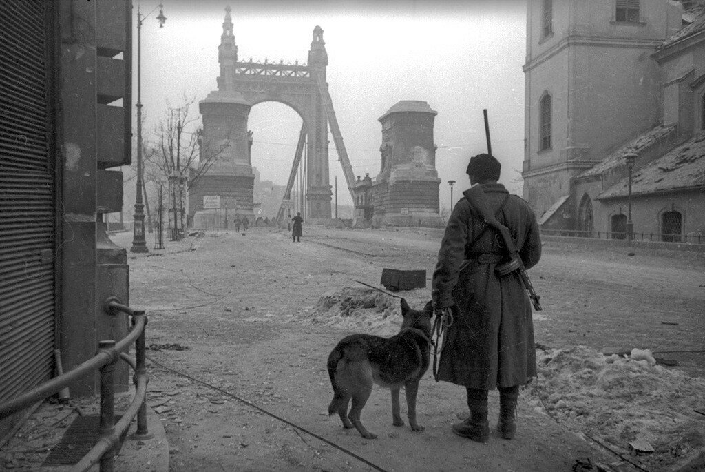 Liberated Europe Through the Eyes of Soviet Photojournalists