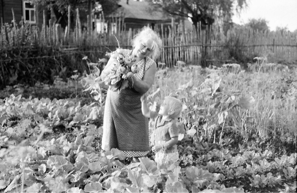 Урожай с огорода Неизвестный автор, 1987 - 1988 год, Калининская обл., дер. Берниково, из архива Дениса Тюленева.