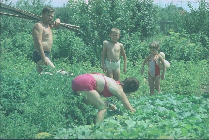 Семья на садово-дачном участке Всеволод Тарасевич, 1966 год, Волгоградская обл., г. Волжский, МАММ/МДФ.
