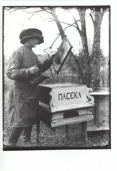 На пасеке Леонид Шокин, 1930-е, Калининская обл., г. Кимры, МАММ/МДФ.
