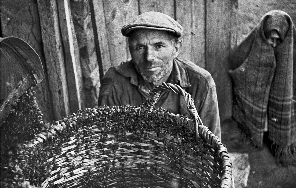 Пасечник Сергей Сухарев, июнь - июль 1953 года, Рязанская обл., Скопинский р-н, с. Березняги, из архива Павла Сергеевича Сухарева.