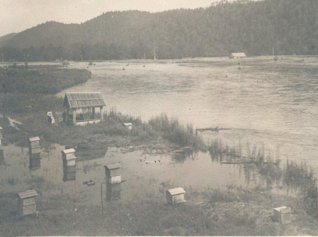 Пасека залитая водой Неизвестный автор, 1949 год, Приморский край, Сихотэ-Алинский заповедник.